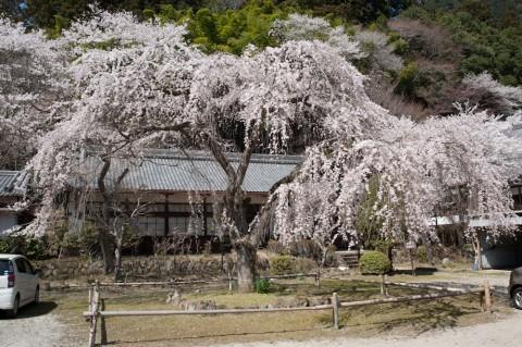 09室生寺