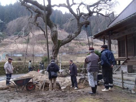 樹木医 西光寺 奈良テレビ