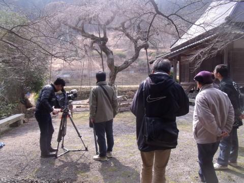 西光寺 奈良テレビ 樹木医