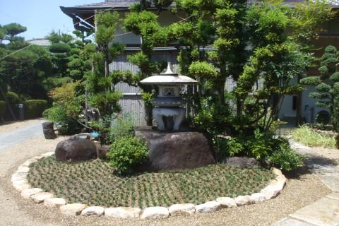 タマリュウ 和風庭園