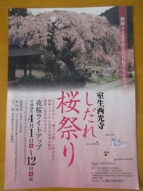 桜祭り お花見