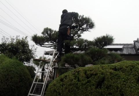 堺市の造園